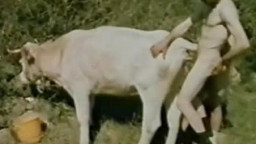 Мужик трахает корову в немецком зоо порно видео