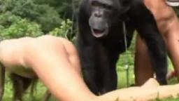 Секс с обезьяной двух девушек. Смотреть зоо порно видео бесплатно